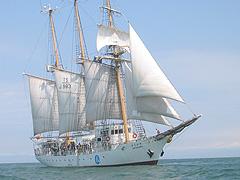 洋上研修(ボートから見た帆船)