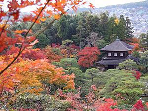 京都紅葉02