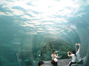旭山動物園02